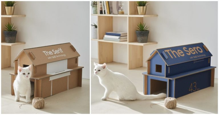 Samsung Creates Boxes that Can Easily Turn into Adorable Cat Homes